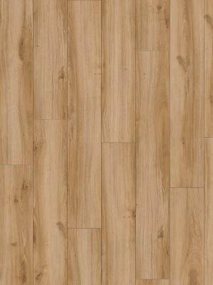 Moduleo Select Country Oak 24837 1