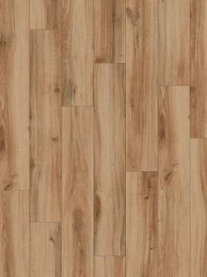 Moduleo Select Country Oak 24844 1