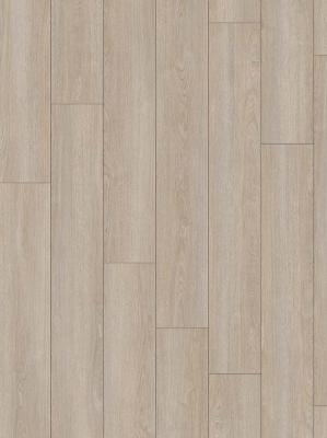 Moduleo Transform Verdon Oak 24232 2